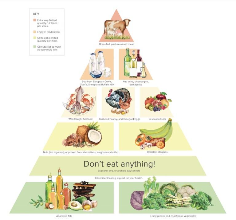 Nieuwe voedselpiramide